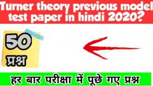Turner theory previous model test paper in hindi 2020?